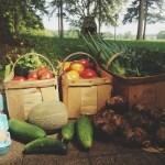 Easy Garden Frittata