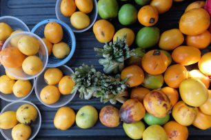 fresh fruit borneo