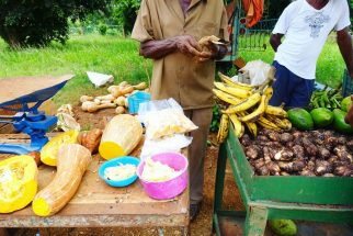 Cuba fresh produce