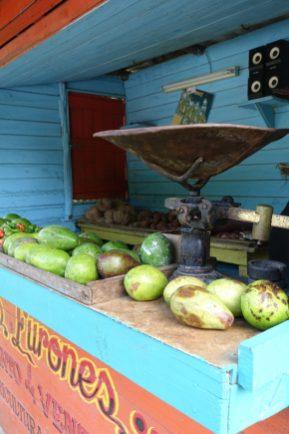 fruit Cuba vegan