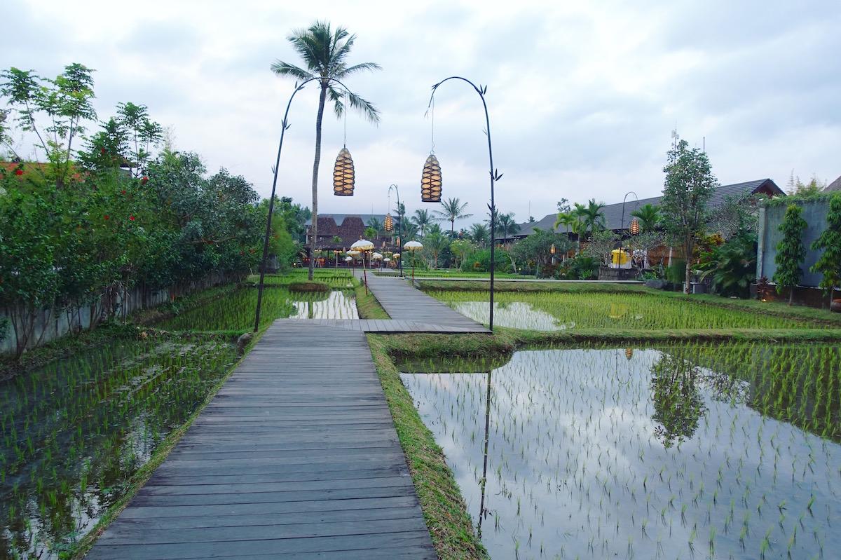 Ubud a great hub to explore Bali