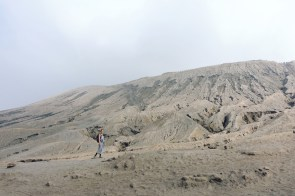 Bromo vegan travel14