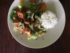 gado gado vegan travel
