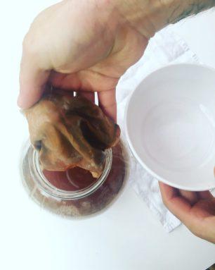 making kombucha