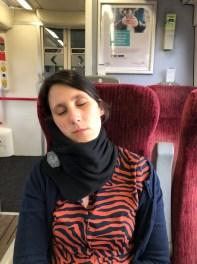 Trtl Pillow confort travel