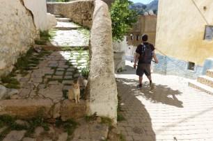 Moulay Idriss travel