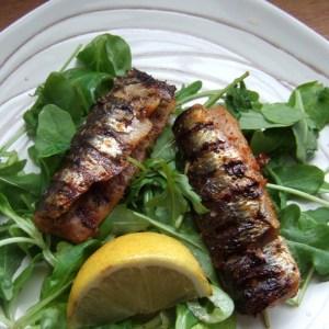 Grilled sardines with Harissa