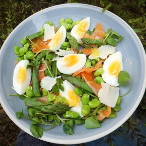 Smoked salmon and egg salad