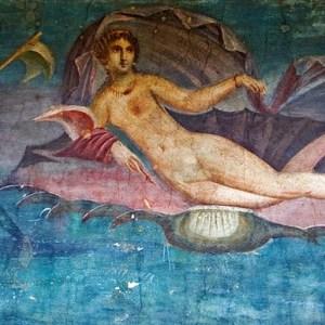 Aphrodisiacs