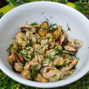 Simple Mussel salad