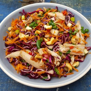 Chinese style chicken and red cabbage salad