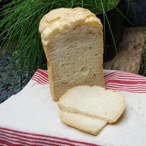 Simple bread machine Ciabatta