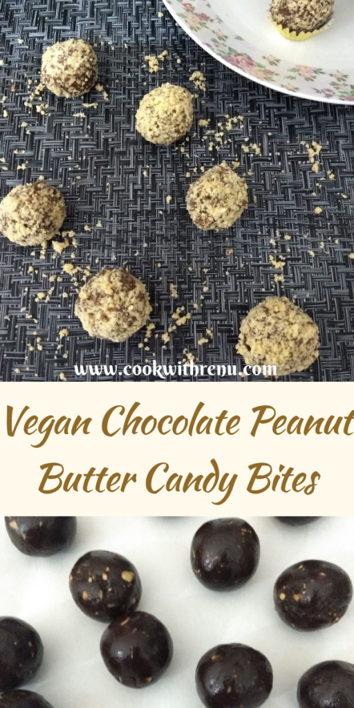 Vegan Chocolate Peanut Butter Candy Bites
