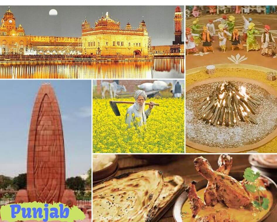 Punjab Collage