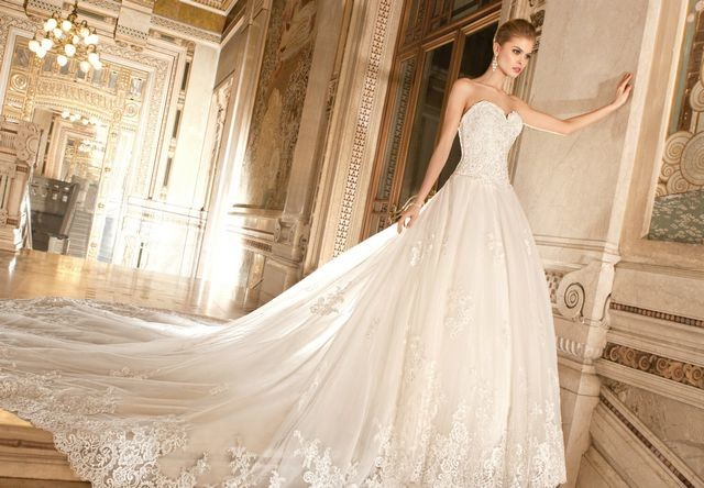 Bridal Dresses With Long Train Pictures
