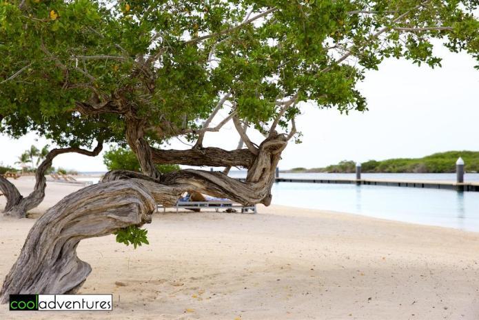 Relaxing on the beach at Santa Barbara Beach Resort, Curacao