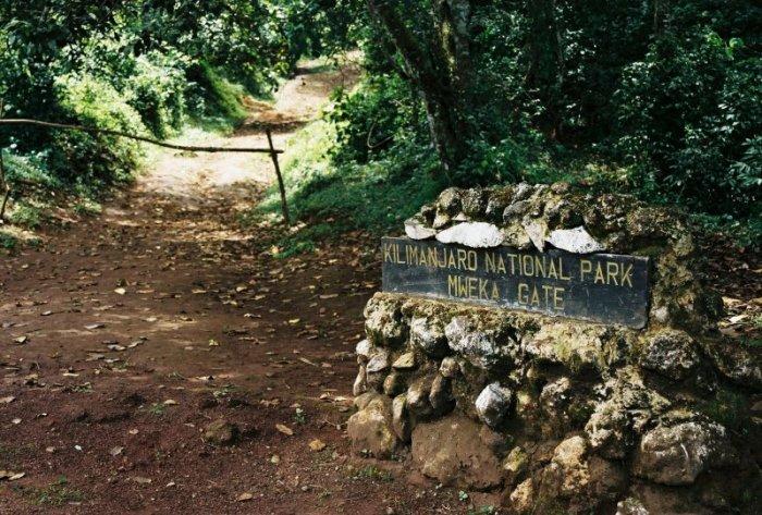 Kilimanjaro Machame Route Day 7