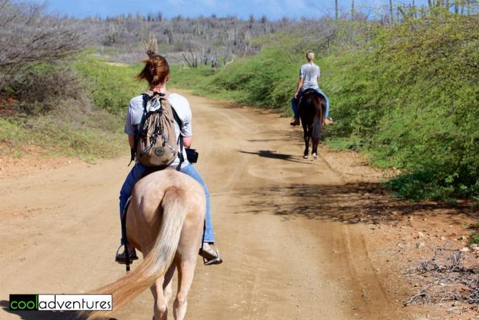 Horseback riding with Rancho Washikemba, Bonaire