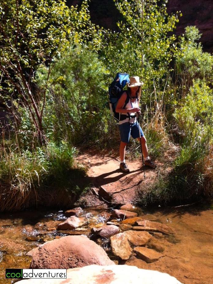 Moab, Hiking Negro Bill Canyon Trail