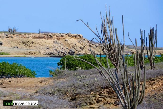 Lagoon Bay, Rancho Washikemba, Bonaire