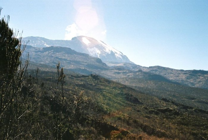 Kilimanjaro Machame Route Day 2