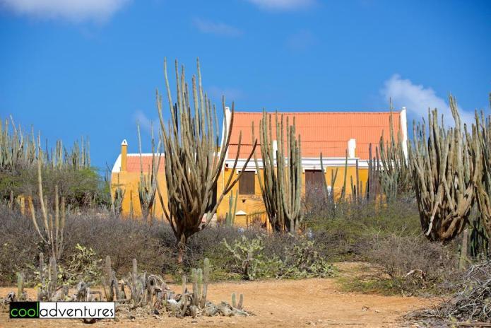 Plantation Washikemba, Rancho Washikemba, Bonaire