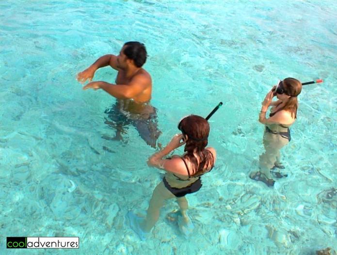 Kim Hull, Swimming with sharks and rays in Bora Bora