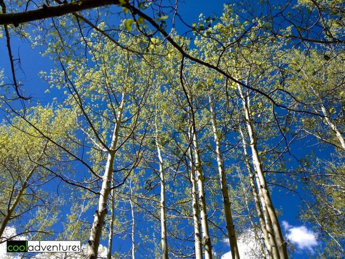 Hiking the Rio Grande Trail in Aspen, Colorado