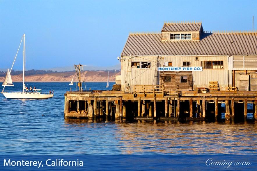 Monterey, California photographs taken by Chasing Light Media