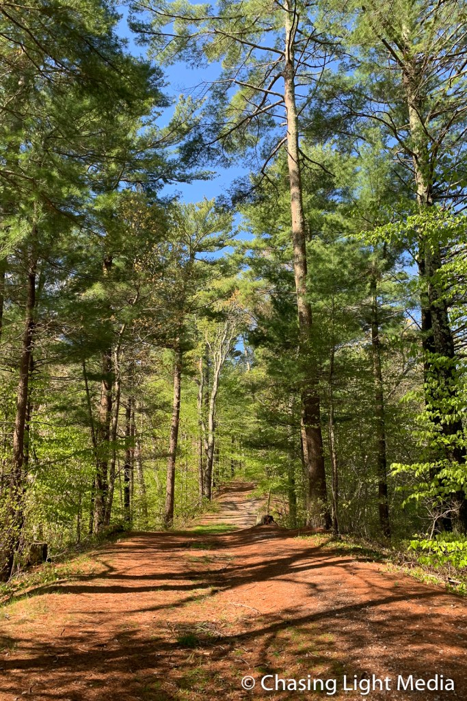 Russell and Sawmill/Stone Pond Conservation Area hiking path, P