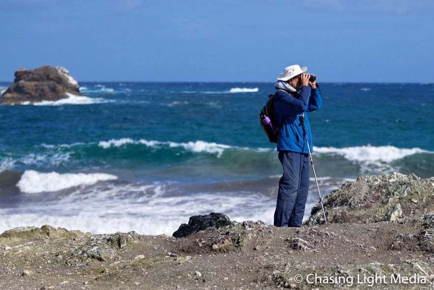 Naturalist Paul Jones, Islas San Benito, Mexico