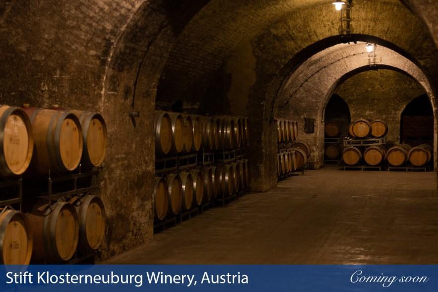 Stift Klosterneuburg Winery, Austria photographs taken by Chasing Light Media