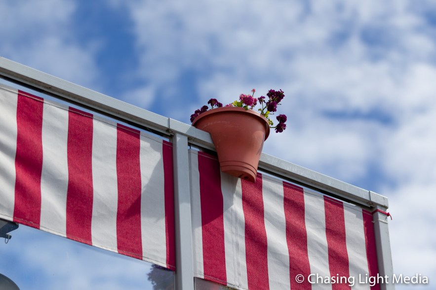 Flowers atop red and white striped awning