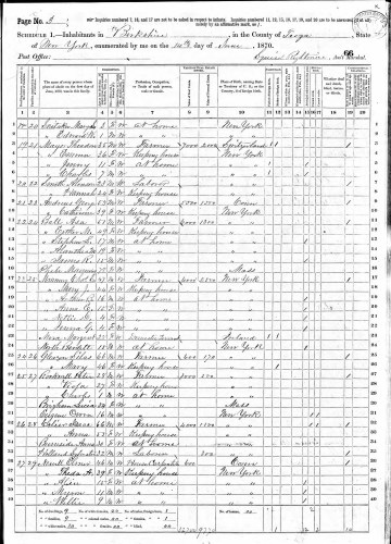 1870 U.S. census, Berkshire, Tioga County, New York, population schedule, p. 3-4, dwelling 27, family 29, Elmer Newell household.