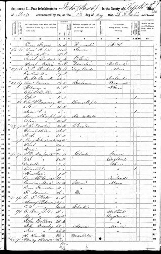 1850 U.S. census, Boston, Suffolk County, Massachusetts, population schedule, p. 338 (stamped) 29 (penned), dwelling 159, family 171, Mary Chadwick household