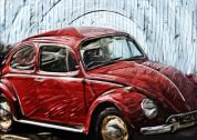 vw-beetle-tilly-williams