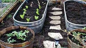 30 DIY Garden Bed Edging Ideas