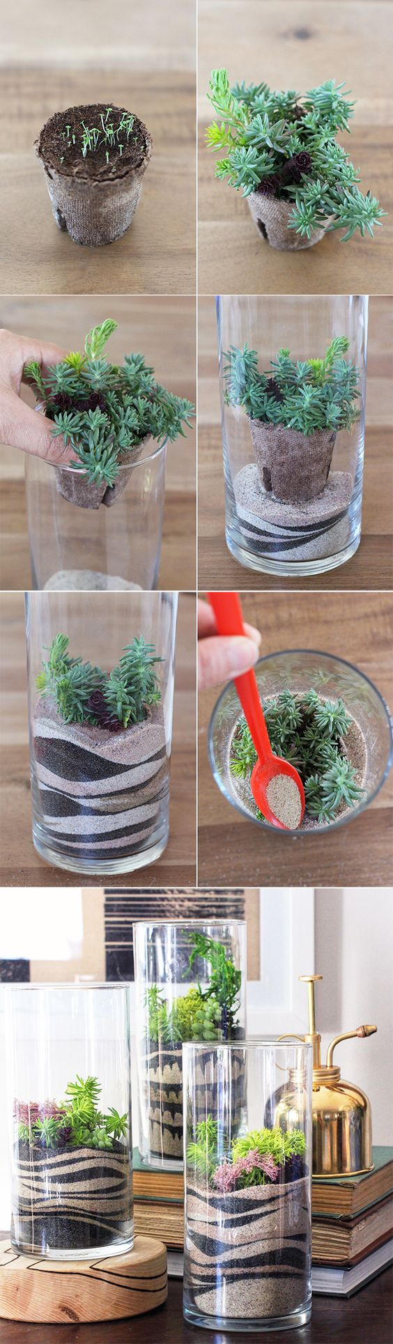 25 Indoor Succulent DIY Project Ideas Page 4 Of 4