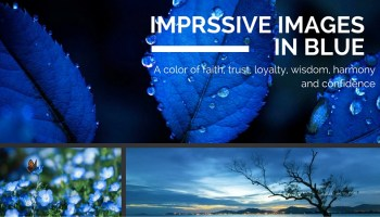 images in blue