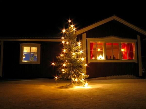 A Wonderful outdoor Christmas tree