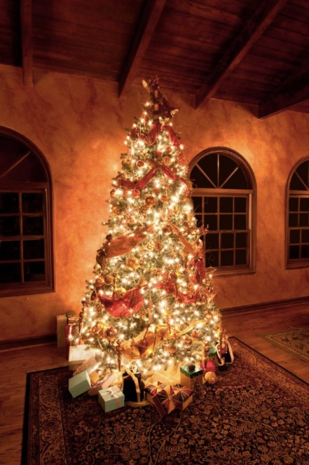 A beautiful Christmas tree decorated for the holidays