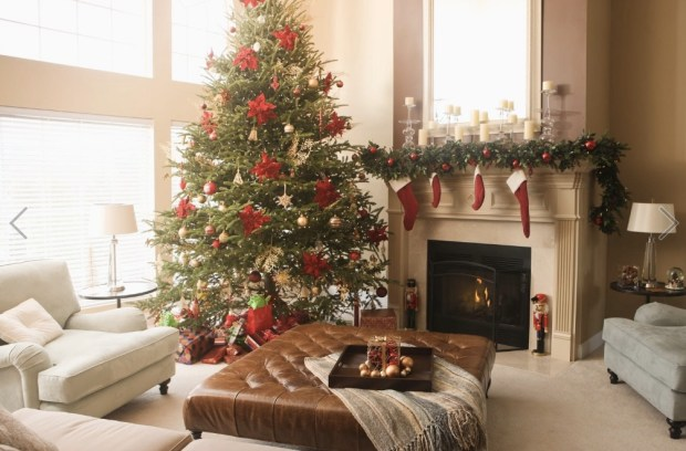 Christmas tree and decorations in living room