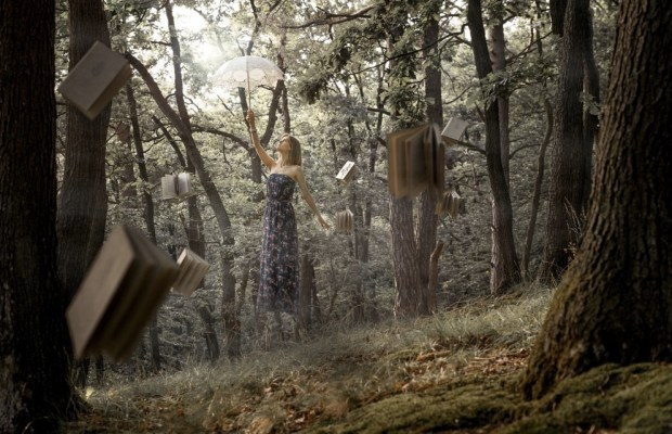 forest-magic