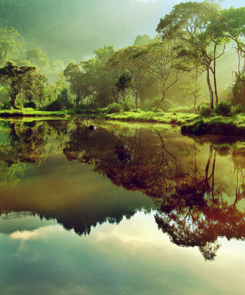 Morning at Situ Gunung II