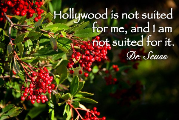 Hollywood is not suited for me, and I am not suited for it