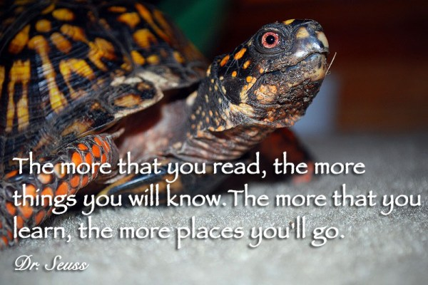 The more that you read, the more things you will know. The more that you learn, the more places you'll go