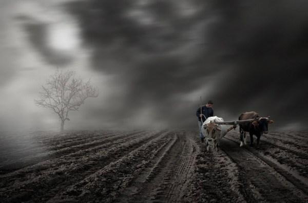 farmer I