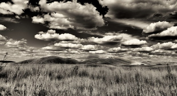 The Land In Black And White
