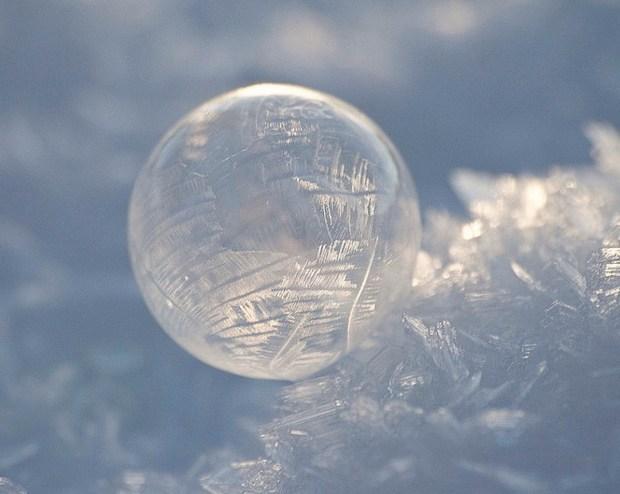 Frozen bubble in sunlight