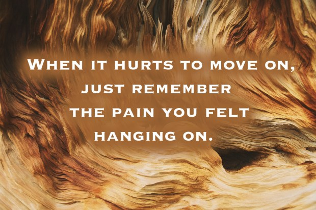 when-it-hurts-to-move-on-just-remember-the-pain-you-felt-hanging-on